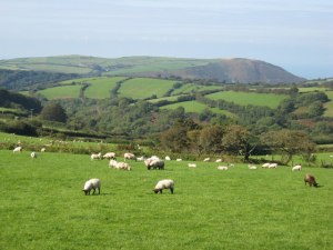 English_countryside_at_its_best_-_geograph.org.uk_-_1394983