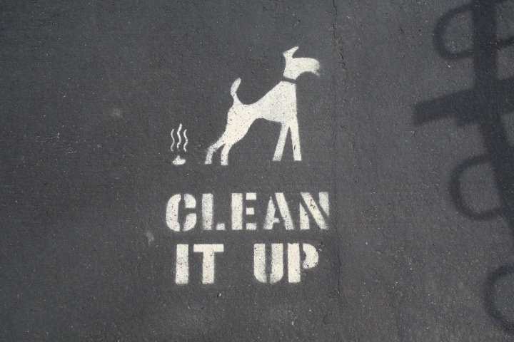 This one is for Megan. Classic British people, feeling the need to depict the steaming pile of poop :0