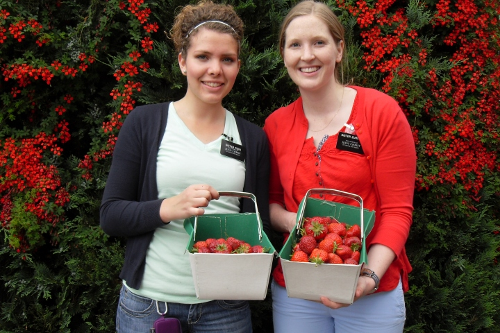 P-day adventures: picking strawberries and raspberries at Church Lane Farm.